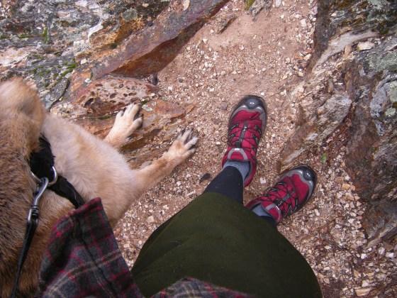 jenjoycedesign© paws at the peak