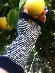 Enquery's Pin-Striped Mitts