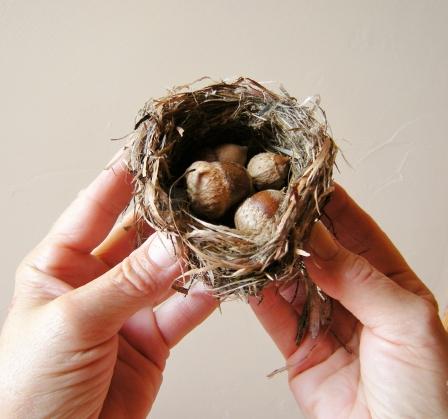 jenjoycedesign© nest
