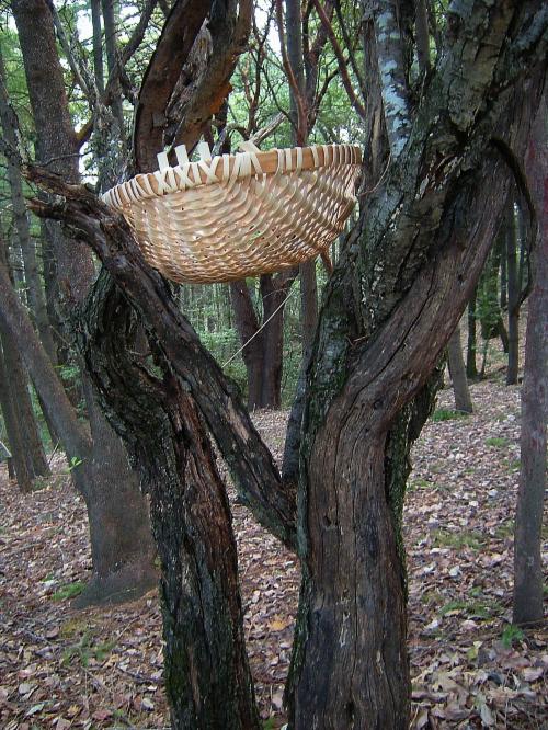 jenjoycedesign©offering basket