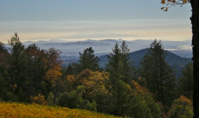 jenjoycedesign© November Landscape