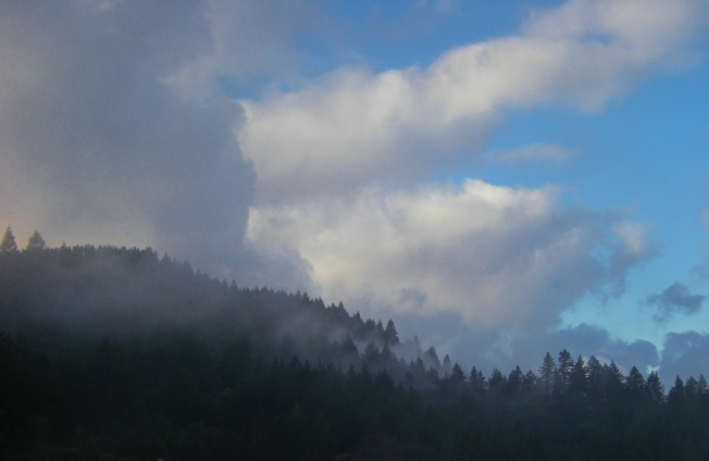 jenjoycedesign© clouds