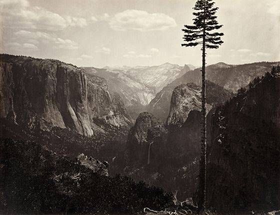 779px-Carleton_Watkins,_Yosemite_Valley,_California,_ca._1865