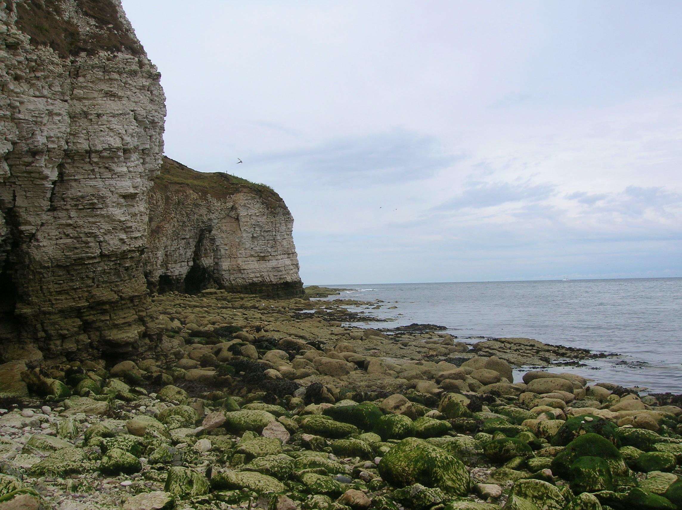 cliffs_at_flamborough_head