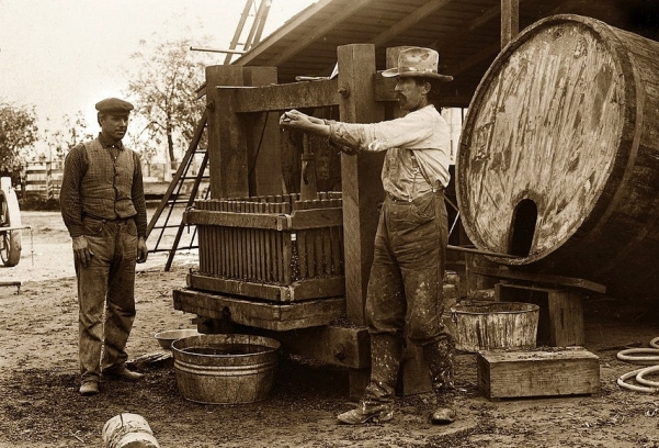 making-wine-circa-1920s-california-2