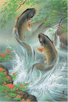 fish-splash