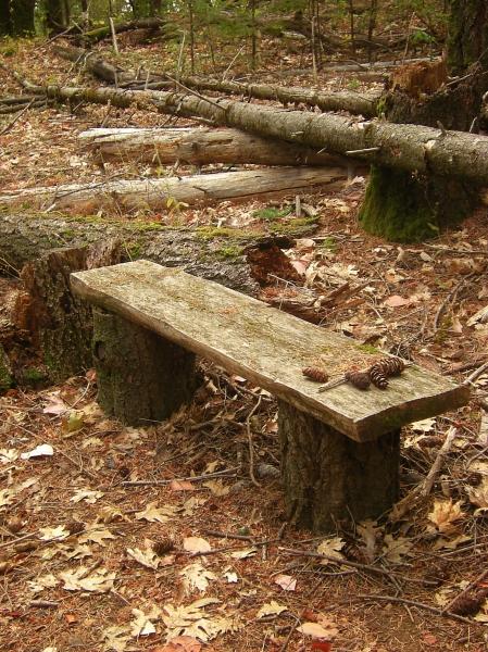 jenjoycedesign© bench