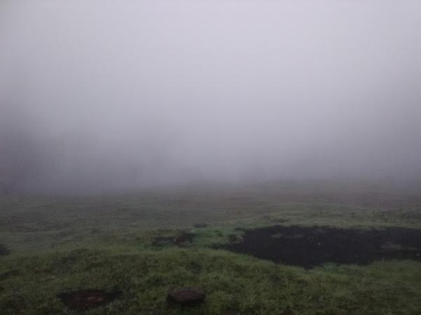 jenjoycedesign© mist