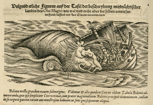 sea-monster-edinburgh-1600's
