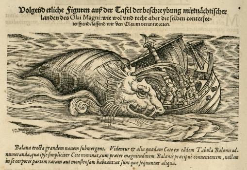 sea-monster-edinburgh-1600's
