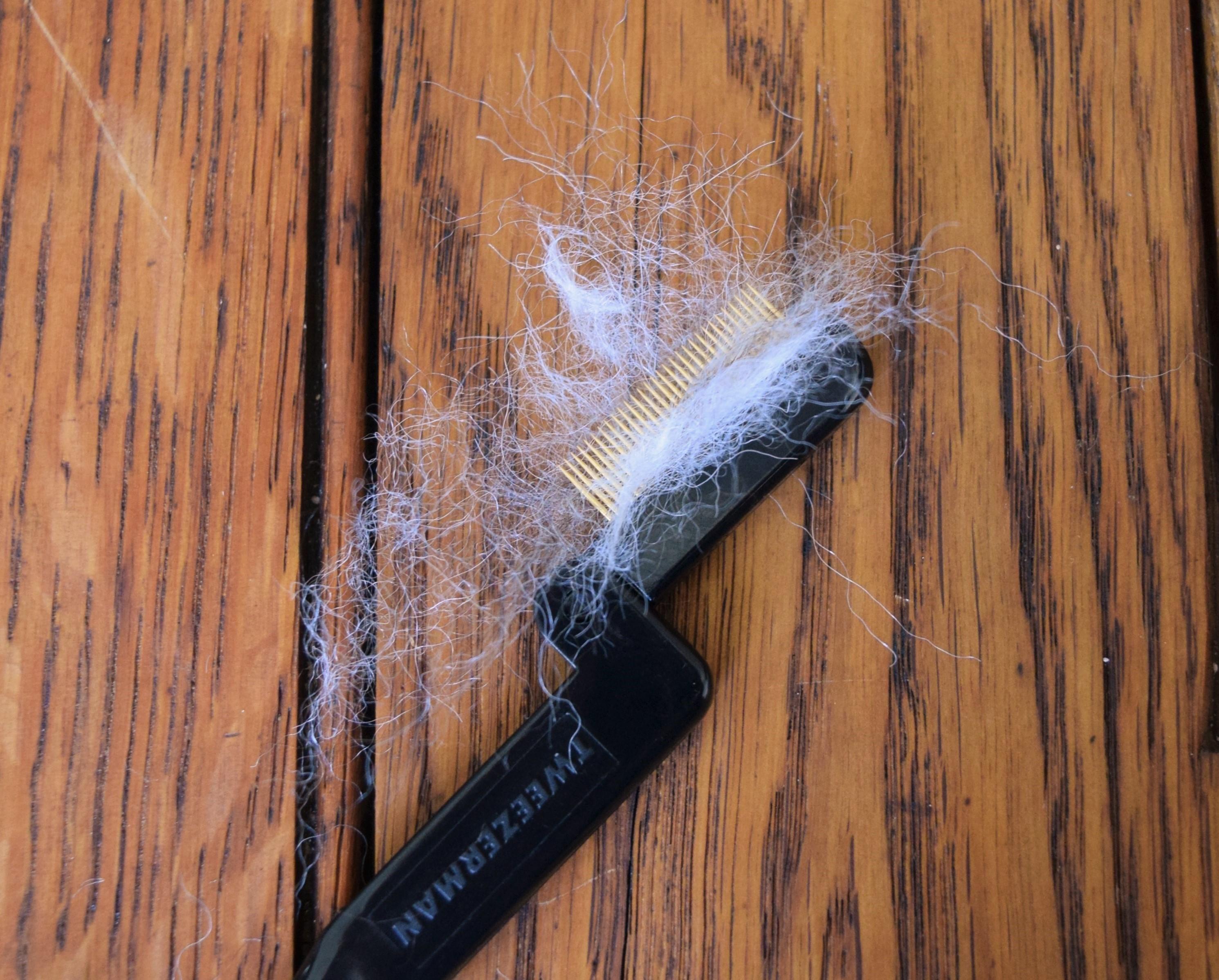 jenjoycedesign© eyebrow comb
