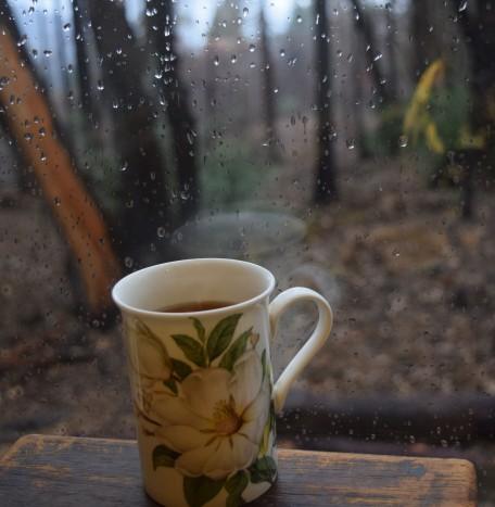 jenjoycedesign© rain.JPG
