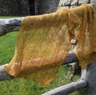 Golden Fields Lace